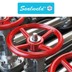 Sealweld Virtual Valve Training - Valve 101
