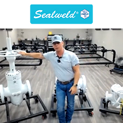Sealweld Introduction to Virtual Valve Training